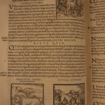 1575 Hieroglyphica Valeriano EGYPT Egyptology Idol Occult Illustrated Woodcuts