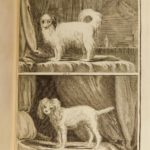 1755 Buffon DOGS Natural History ANIMALS 52 Illustrated PIGS Goats Sheep Rams