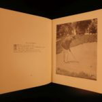 1919 Pictures Golf Strokes GOLFING Sports Jim Barnes Illustrated Game Britain