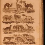 1812 Imperial Encyclopedia Science Astronomy Geography MAPS Illustrated Botany