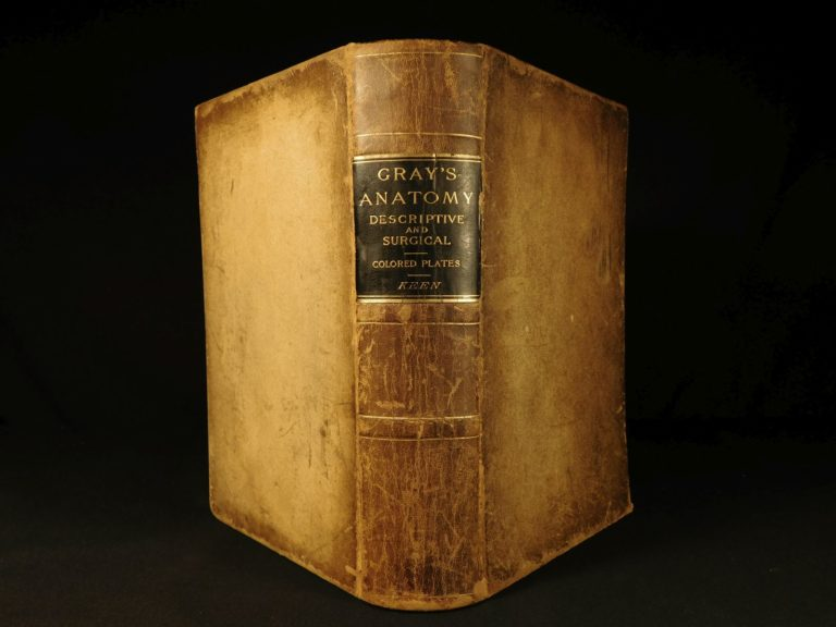 Image of 1887 Henry Gray GRAY'S ANATOMY Human Surgery Illustrated Medicine Physician