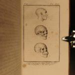 1801 1ed Virey Natural History of Man Monkeys pre-Darwin EVOLUTION Illustrated