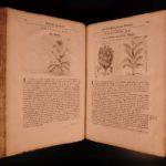 1694 1st ed History of Drugs Pharmacy MEDICINE Pomet Illustrated Unicorns Sugar