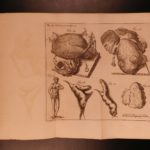 1747 Philosophical Transactions MEDICINE Surgery Anatomy Illustrated Inventions