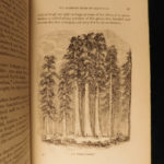 1865 1ed Illustrated Scenes of California National Park Yosemite MAPS Hiking