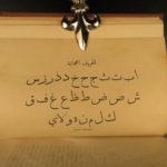 1873 1ed Women of the ARABS Feminism Syria Insane Hospital Arabia Jessup