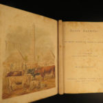 1880 1ed Dairy Farming by Sheldon Agriculture Cattle Color Illustrated Milk Cows
