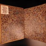 1604 CLASSIC Latin History of Rome Livy Tacitus Suetonius Donati Philosophy