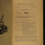 1859 British Fish Illustrated Woodcut Engravings Natural History Yarrell 2v SET