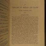 1875 Charles Darwin Variation Under Domestication Biology Plant Evolution 2v