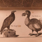 1792 Buffon Natural History Illustrated BIRDS Zoology Ornithology SNAKES Monkeys