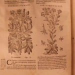 1623 1ed Masawaih Persian & Arabic Medicine HERBAL Cures + ARABIAN Commentary