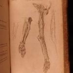 1795 Motherby ANATOMY ATLAS Medical Dictionary SMALLPOX Medicine Neurology