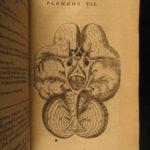 1684 Anatomy Atlas MEDICINE Surgery Neurology Diseases Plates Saint Hilaire