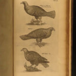 1657 1st ed Jonston BIRDS Thaumatographia Avibus Science Mythological MONSTERS