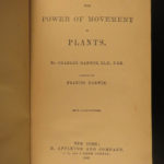 1881 1st US ed Charles Darwin Movement of Plants Botany Leaves Seeds Evolution