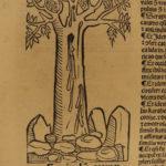 1497 Hortus Sanitatis Incunable WOODCUTS Herbal FLOWERS Botany Garden of Health