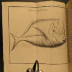 1730 1ed Slavery Voyages of Marchais AFRICA Whydah Maps Labat Sea Monsters 2v