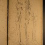 1833 HUGE FOLIO Anatomy Medicine Surgery Muscles ART Flaxman Landseer 21 Plates