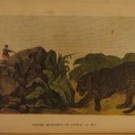 1854 World Panorama America INDIANS Hunting GOLD Australia Arabia China Africa